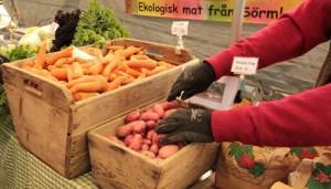 Morotens dag firas 4 april Foto: Lena Ahlström