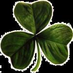 Fyrklöver_Irland