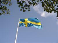 Svenska flaggan Foto: Skansen