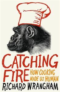 Boken om hur matlagning gjorde oss till människor