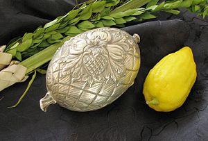 Lulav, en knippe palmkvistar, etroghölje, citrusfrukten etrog. Foto från Wikipedia