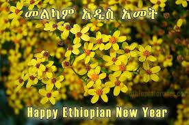Nyårshälsning från Etiopien
