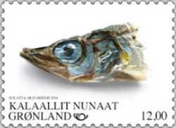 Ammassat, som är det grönländska namnet på lodda, är en liten fisk i laxfamiljen. Den kommer till Grönland i stora stim under hela året och kan äts kokt eller torkad.