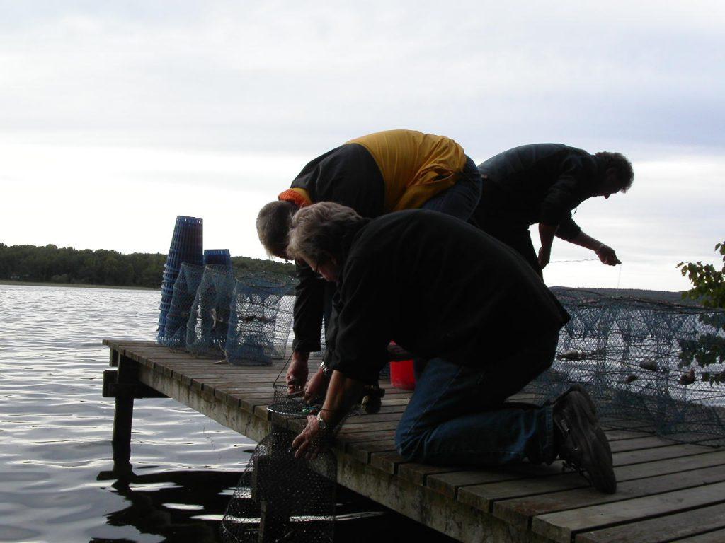 Fiskafänge från bryggan Foto: Lena Ahlström