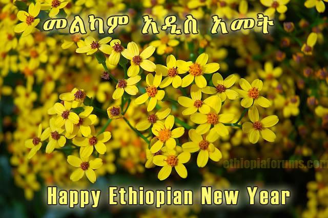 Etiopisk nyårshälsning med traditionella vildblommor.