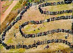 Miljoner sydafrikaner köade för att få rösta 1994. Bild från Wikipedia