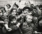 Några av de 600 barn som överlevde Auschwitz som visar upp sina intatuerade identitetsnummer. Foto från Auschwitz-Birkenau Memorial and Museum