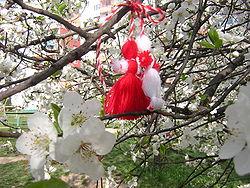 Martenitsa i ett blommande träd. Foto: Preslav