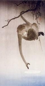 Gibbonapa - som bringar lycka - sträcker sig efter månens spegling.