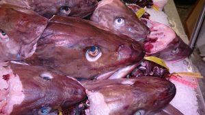 Vit fast fisk passar till fiskgrytan moqueca de peixe. Foto: Caroline Maino